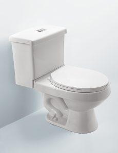 Innovation Dual Flush Redondo